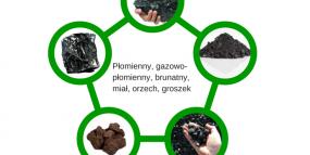 Rodzaje i sortymenty węgla kamiennego stosowanego w kotłach zasypowych.